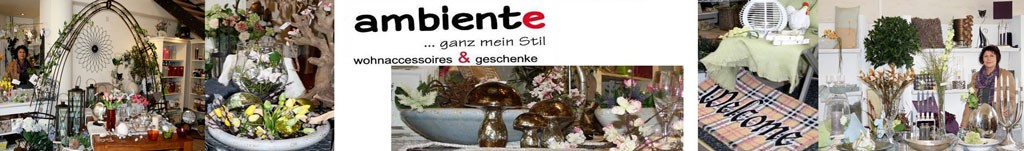 ambiente_banner