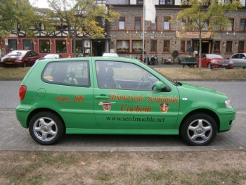 auto_cochem